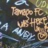 tamago_